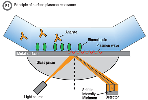 the role of surface plasmon resonance in clinical